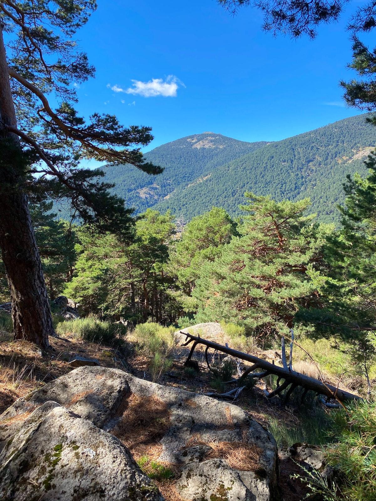 Paisaje de montaña verde en un día claro.